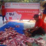Keberkahan yang Allah Berikan Pada Daging Kambing