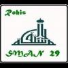 sman-29-png